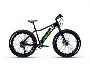 NEW! Surface 604 Boar E350- Electric Bicycle/ Fat bike - SALE