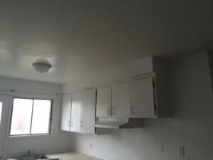 5 and half for rent in Lasalle ASAP West Island Greater Montréal image 7