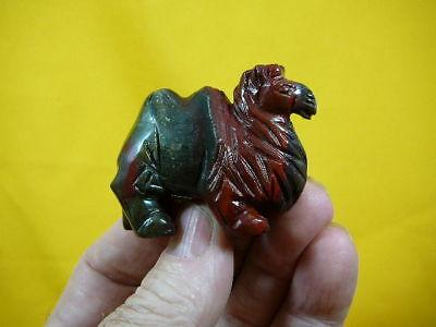 (Y-CAM-700) CAMEL camels RED BLACK gem stone gemstone carving zoo