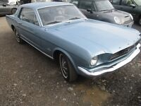 1966 Ford Mustang Coupe in Immaculate Condition