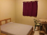 1 bedroom in a quiet area - close to West Edmonton Mall