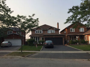 large basement room available near humber college north campus