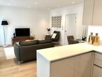 New large split level 2 bed flat to rent Rochester Place, Camden Town, NW1 with communal roof garden