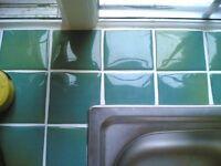 Carpenter plasterer plumber roofer handyman tiler decorator gardener brickwork fitter