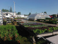 Welcome to French River Gardens Centre