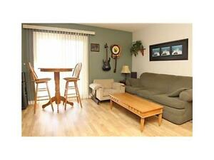 Bright Clean Carpet Free Condo Available March 1st Kitchener / Waterloo Kitchener Area image 3