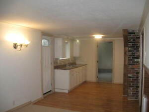 Gorgeous bright ground level 2 bedroom / big yard river view