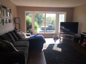 Three bedroom bilevel main floor for rent