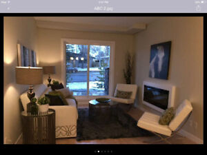 Executive condo near Southgate!. December Free!