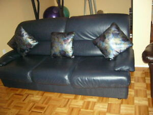 Italian  Leather Couch and Loveseat