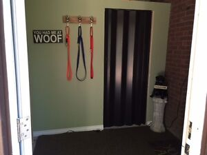 Private Dog Care Book Now For Fall - Limited Spaces Kawartha Lakes Peterborough Area image 5