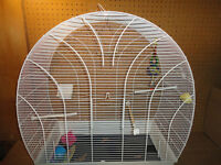 Bird Cage and Accesories