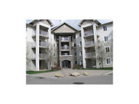 SW 2bed + 2bath - NEAR LRT - ALL UTILITIES INCLUDED - LOW FEES!