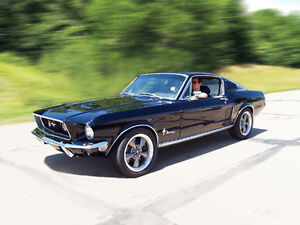 WANTED: FORD MUSTANG, FAIRLANE, OR TORINO FASTBACK