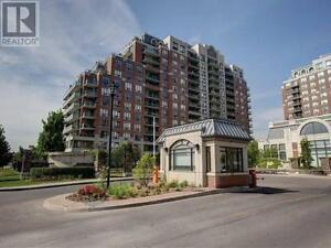 Rarely Offered Sun Filled Penthouse!! 1Br,1B, 310 RED MAPLE RD