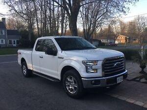 Like New 2015 Ford F-150 XTR Pickup Truck
