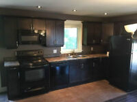 Executive townhouse for rent! Avail now! Walk to Mall or Downtwn