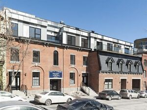 Near St-Laurent metro, Entertainment district and walk to McGill