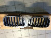OEM BMW X6 front grills