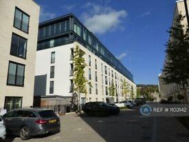 1 bedroom flat in Percy Terrace, Bath, BA2 (1 bed) (#1103142)