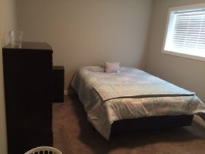 1-Bedroomed Basement Apartment Avail