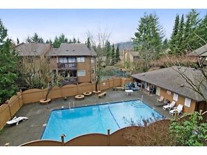 North Vancouver Fixer Upper Condos from $319,000 North Shore Greater Vancouver Area image 9