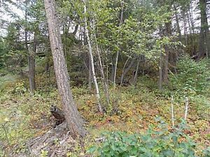 Rare Lake View Building Lot in Family Orientated Russet Bluff!! Williams Lake Cariboo Area image 2
