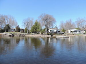 265FT GEORGIAN BAY WATERFRONT★3 COTTAGES & POOL★INCOME POTENTIAL