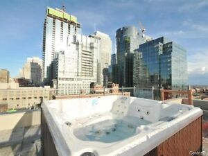 One bedroom apartment on Bishop Montreal Downtown Concordia