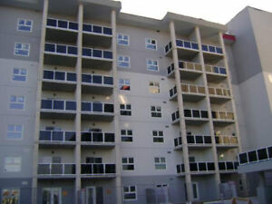 Condo for Rent - Close to U of M - Immediate Availability