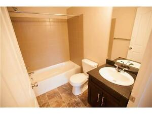 Spacious+ Modern 2 Bedroom+Den / 2 Bath Apartment in Rutherford