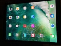Apple IPad PRO 12.9 inch screen ,32 GB WIFI Sapce Grey - like new