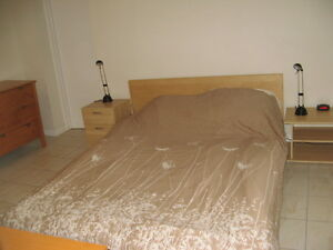 Large bright furnished 1 bdrm bsmt apt dt available August 1