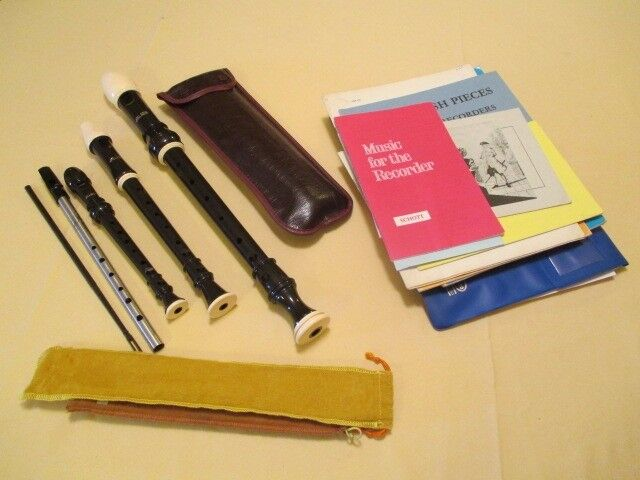 Collection of assorted Recorder instruments