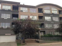 Apartment for Rent in Downtown !