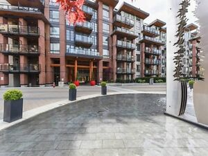 One Bedroom Penthouse Suite w. Private Rooftop Patio