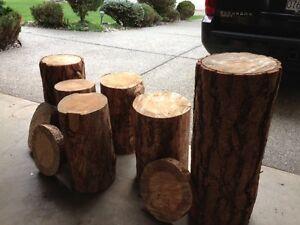Tree Stump side table - $50