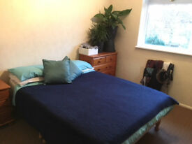 Double room in spacious house. One other flatmate. No agency fees!