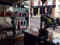 Hair stylist. Full /Part time in Hampstead
