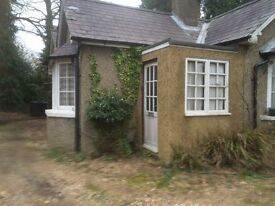 Chertsey Surrey VictorianCottage with accees to large garden to let for some home help