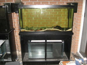 Aquariums 90 gallon w/Very Solid Stand, also 20gal
