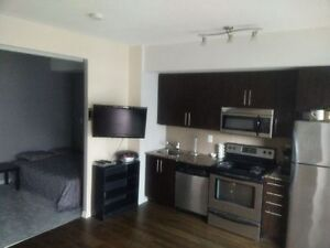 Maple leaf square 1 bedroom short or long term available