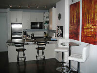 ***CONDO IN THE LOWNEY COMPLEX***ROOFTOP TERRASSE***