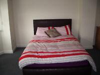 Clean Comfortable En-suite Room in Great Location