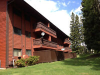 2 bedroom condo for rent. Sparwood Heights