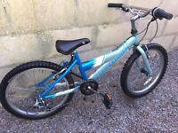 Gary Fisher Cosmo Bike