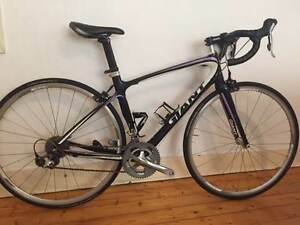 Giant Avail Composite 3 Womens Road Bike Bronte Eastern Suburbs Preview
