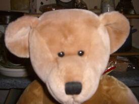 GENUINE HARRODS TEDDY BEAR * BRAND NEW * CLACTON = CO15 6AJ
