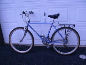 Nishiki Kodiak Mountain Bike / Vintage 1986