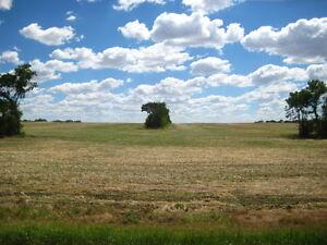 20 acre parcel at Kindersley